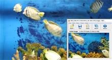 aquarium resize