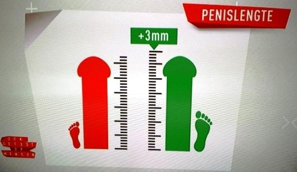 Normale lengte pennis