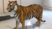 Deze dieren tover je dankzij Google in je huis!